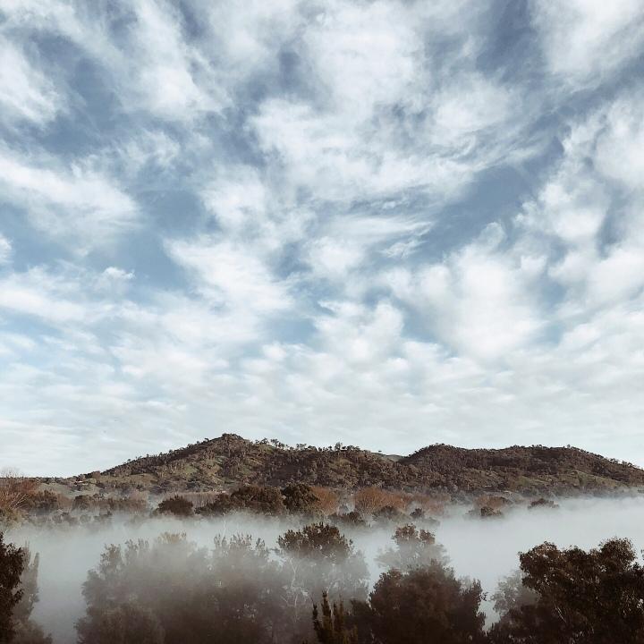 Morning fog over Nimbo Creek, Killimicat, New South Wales, Australia.