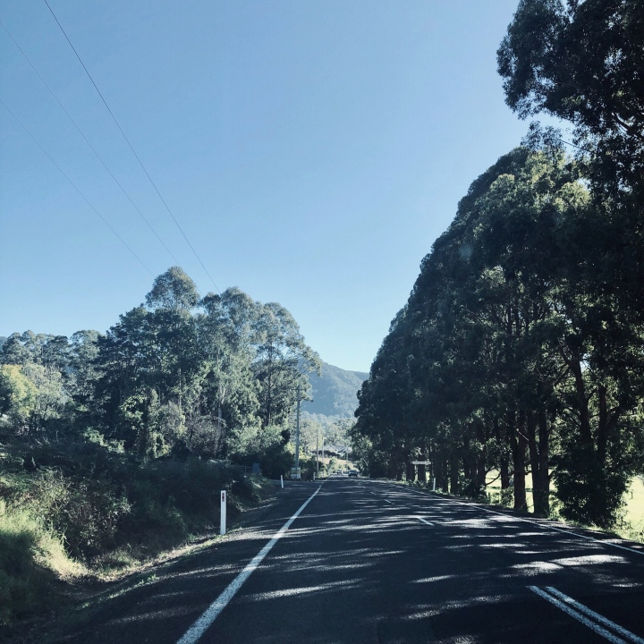 Driving in the Kangaroo Valley, New South Wales, Australia.