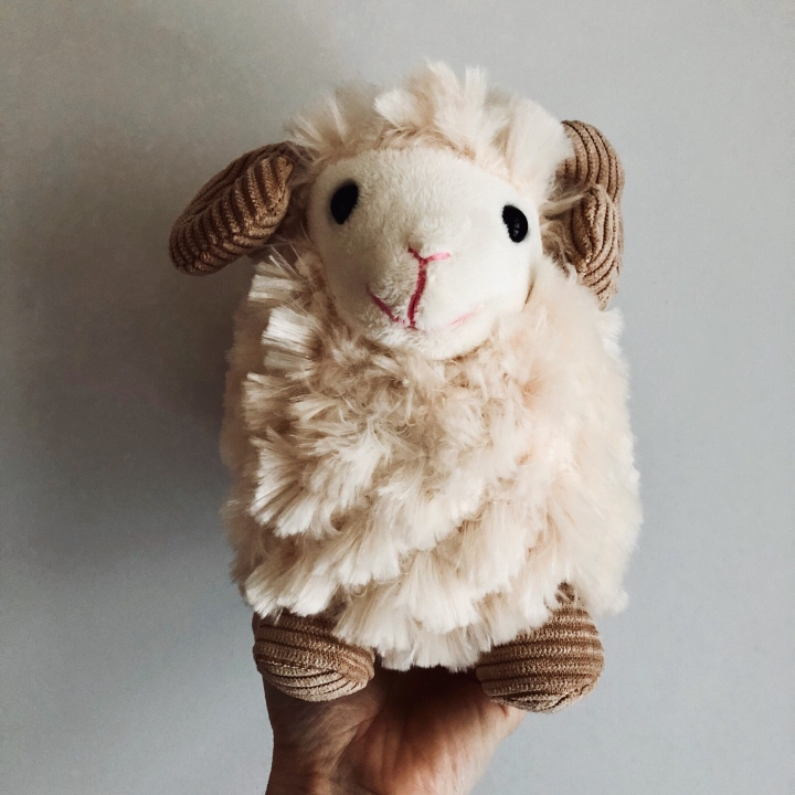 Toy sheep.