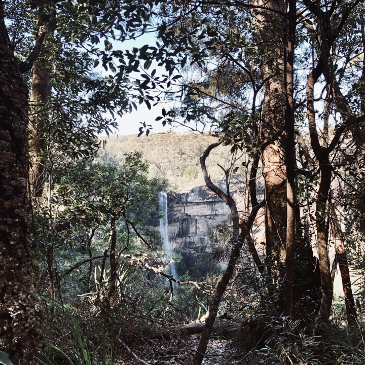 Fitzroy Falls, Morton National Park, New South Wales, Australia.