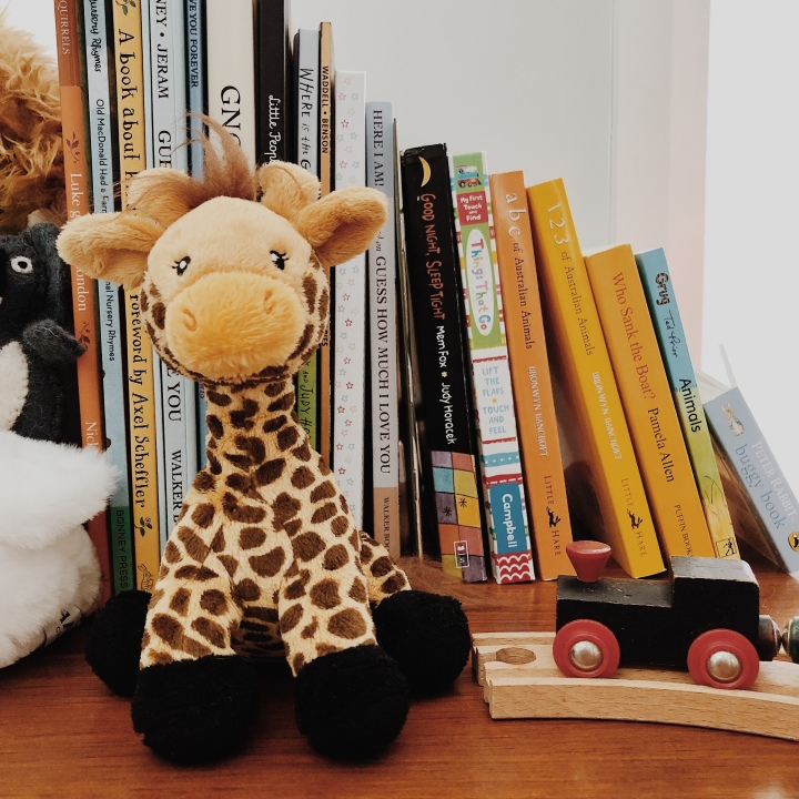 Giraffe toy, books and a wooden train.