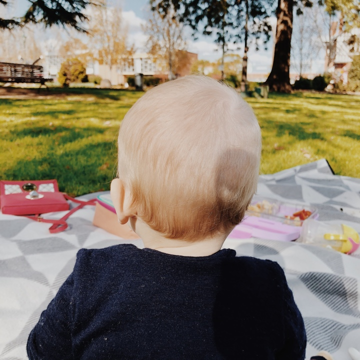 The back of a baby boy's head, sitting on a picnic blanket in a park.