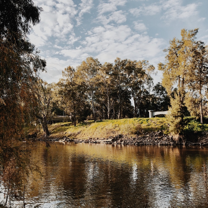 The Murrumbidgee River at Wagga Wagga, New South Wales, Australia.