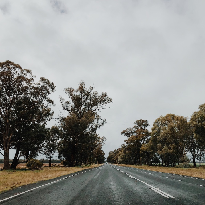 The Sturt Highway between Narrandera and Wagga Wagga, New South Wales, Australia.