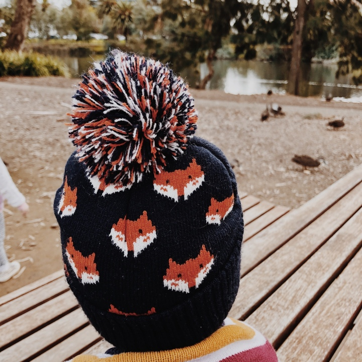 A baby boy in a beanie watching ducks at a park.