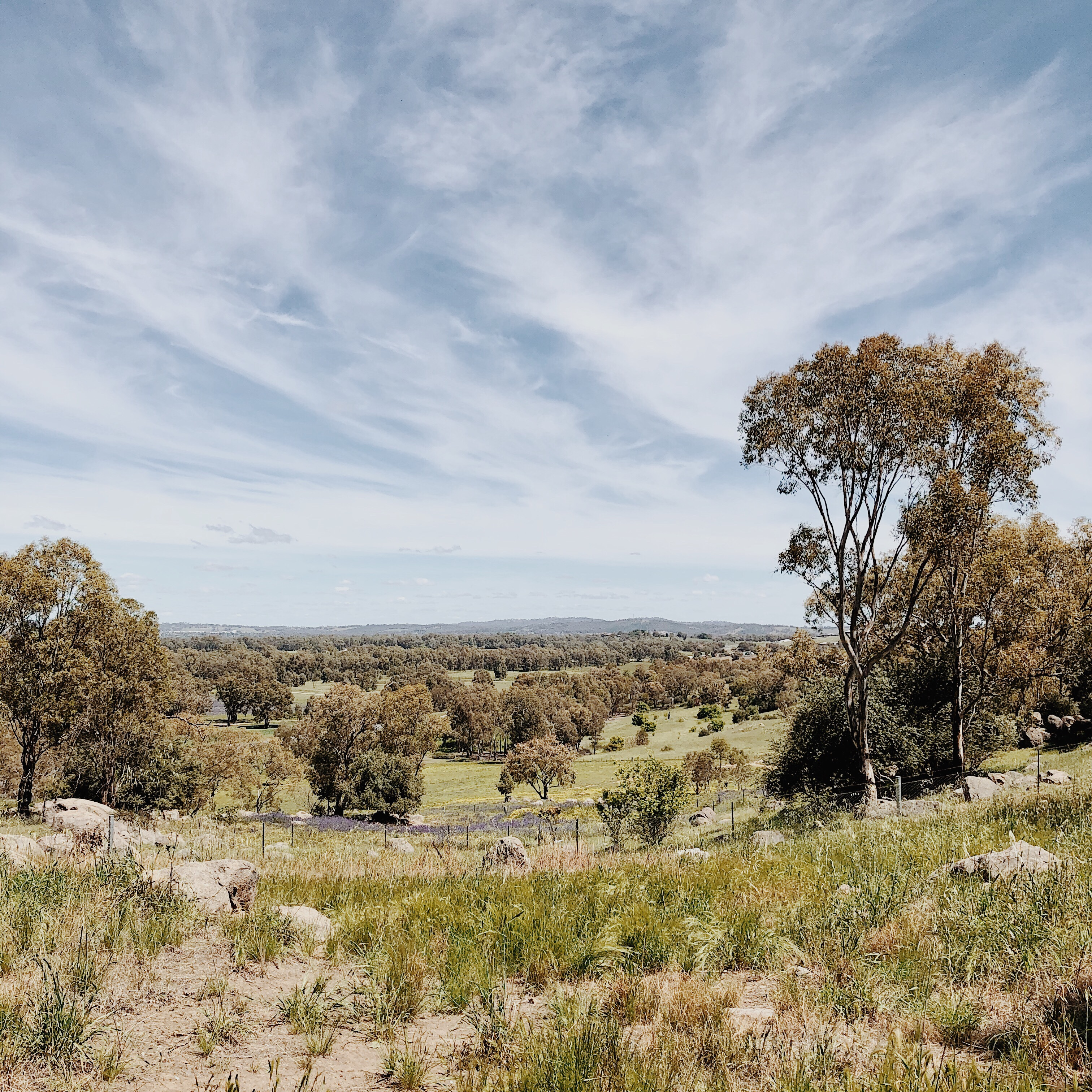 View from Explorer Park, Wagga Wagga, New South Wales, Australia.