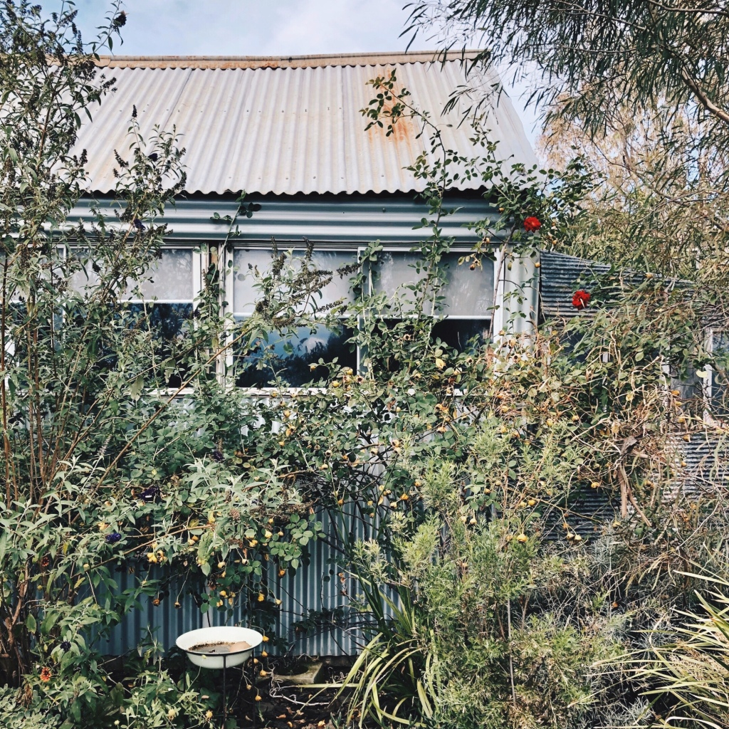 One of the garden sheds at Little Triffids Flowers in North Wagga, New South Wales, Australia.