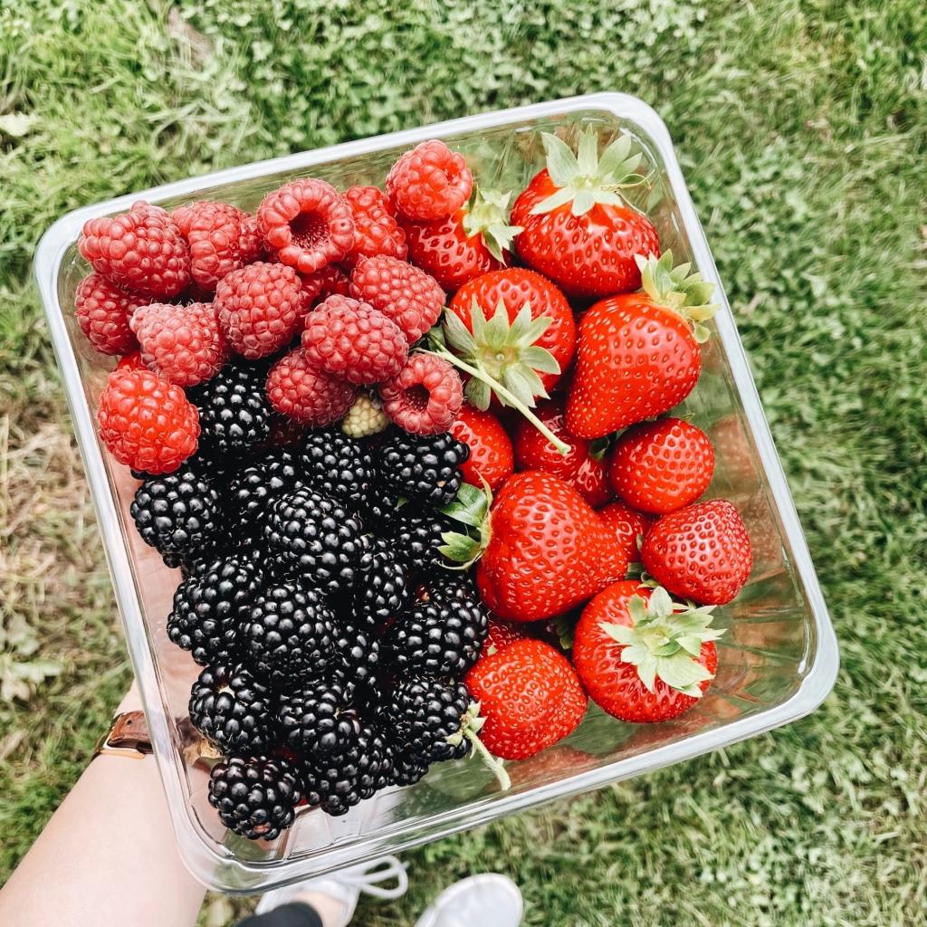 Looking down at a punnet of strawberries, raspberries and blackberries.