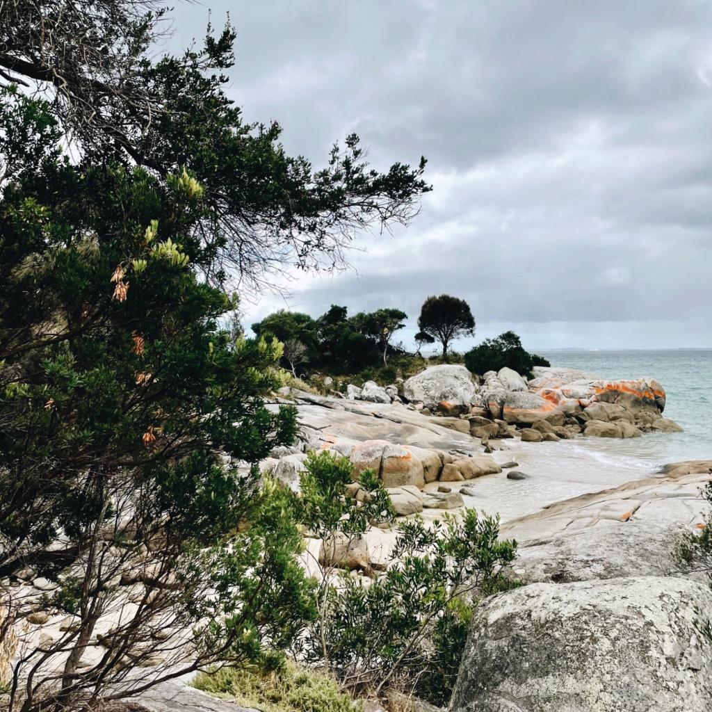 The rugged coastline around Bridport, Tasmania, Australia.